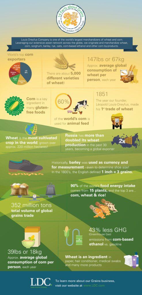blog-grains-infographic-ES.jpg