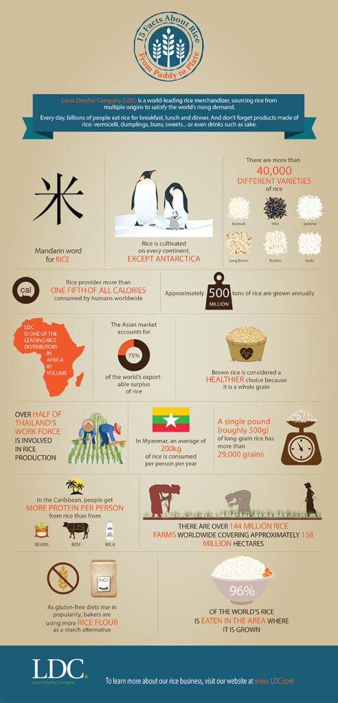 rice_infographic-blog-ES.png