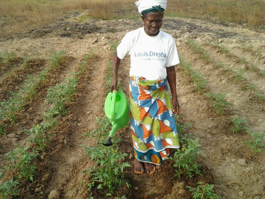 blog-ghana-pg01.jpg