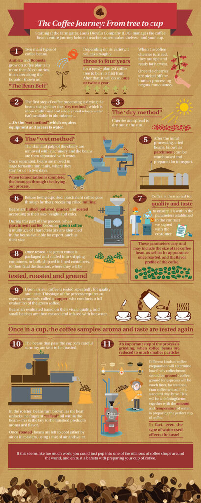 Coffee_Infographic01.jpg
