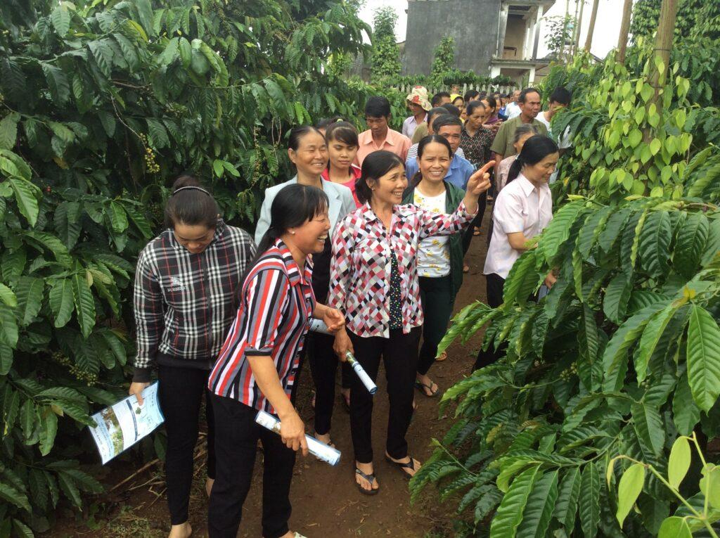 blog-vietnamese-pg03.jpg