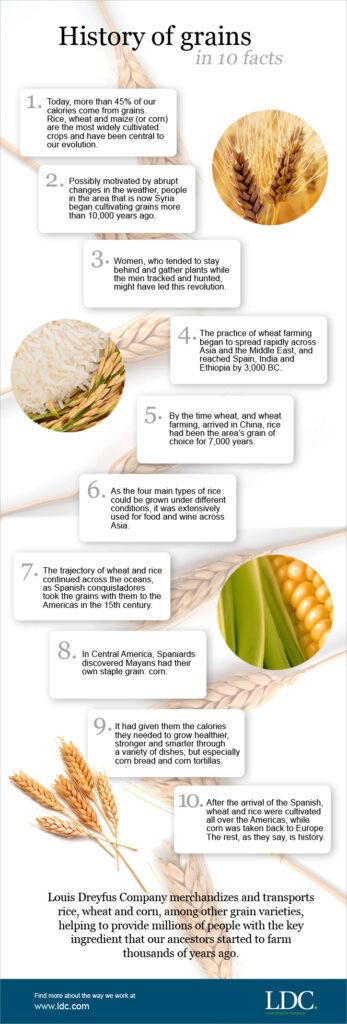 blog-grains-info02b.jpg